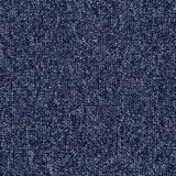 Tessera Apex 640 Carpet Tile Denim 258